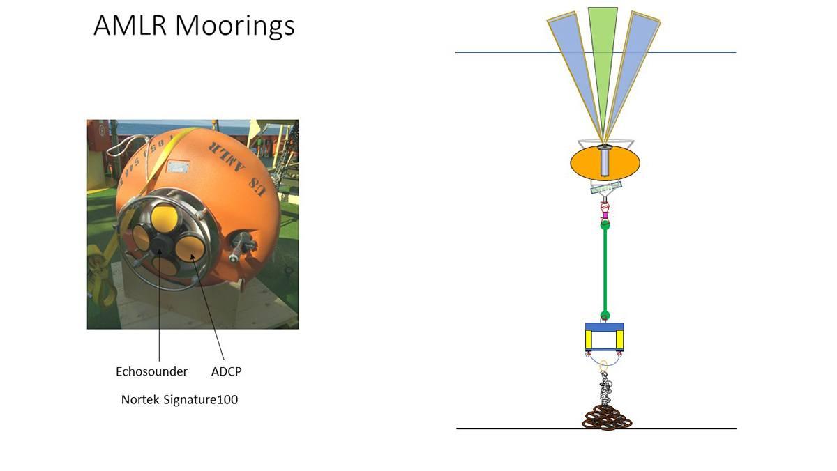 DeepWater Buoyancy ADCP Buoy and Mooring Diagram